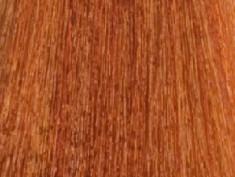 LISAP MILANO 8/63 краска для волос, светлый блондин медно-золотистый / LK OIL PROTECTION COMPLEX 100 мл