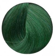 ALFAPARF MILANO Краситель прямого действия / Pure Green rEvolution Color 90 мл