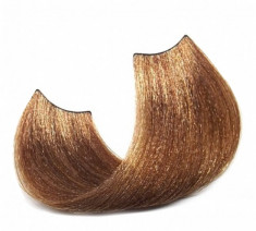 SHOT 8.83 крем-краска для волос, светлый блонд шоколадно-золотистый / Sh BTB Colored 100 мл